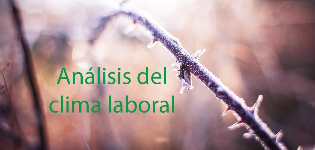 Análisis del clima laboral